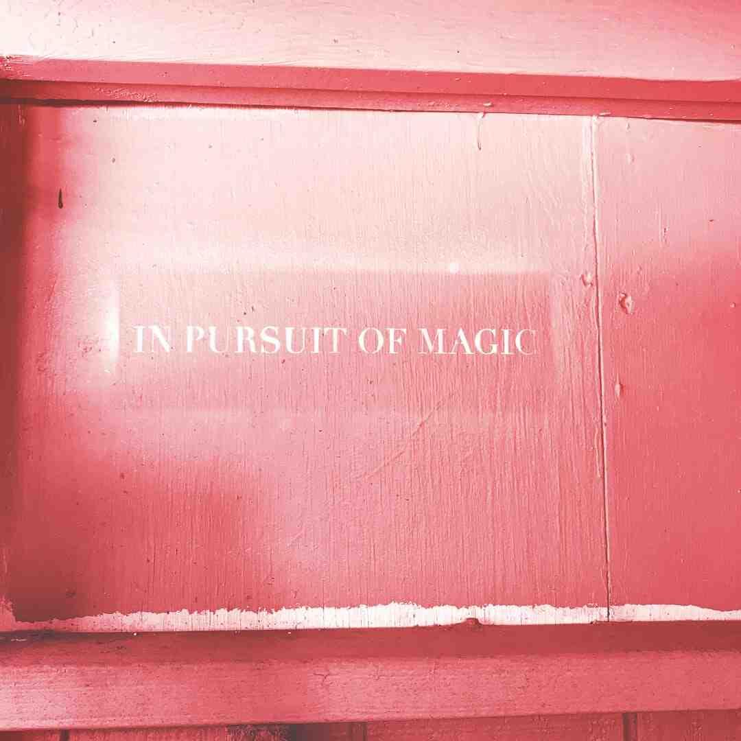 Tour de magie echarpe